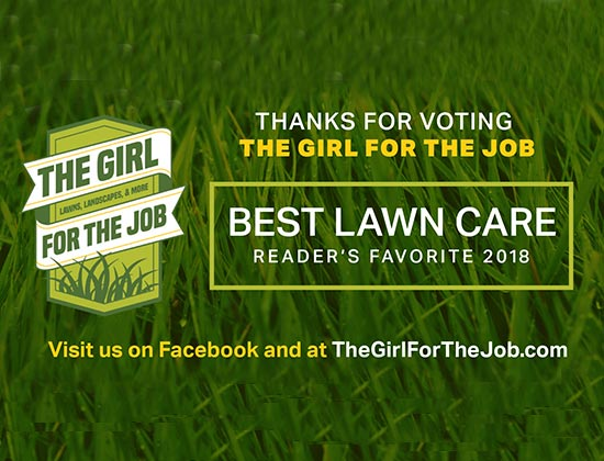 The Girl for the Job spring 2018