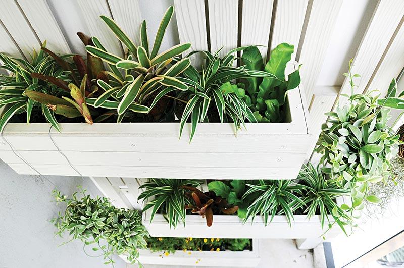 Outdoor Living Downtown - Vertical Gardening & More | Nashville ...
