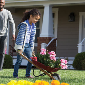 Secrets for a Well-Maintained Lawn